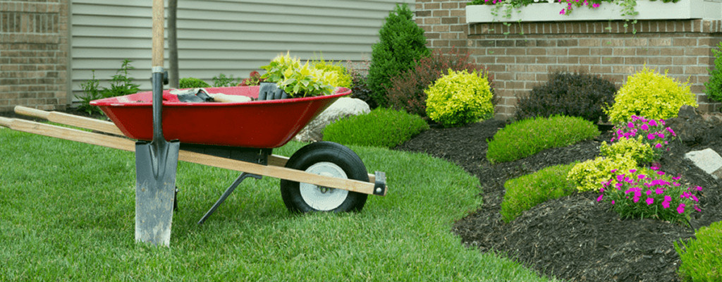 Everyone appreciates a well-manicured yard - but don't plant too close to your A/C unit!